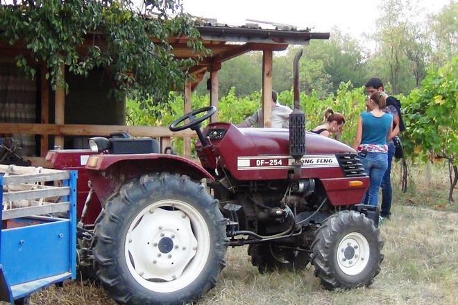 """Разходка с трактор във втората седмица на """"Черешката на тортата – ти си звездата"""""""