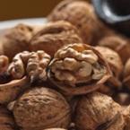 Орехите – храна за ума