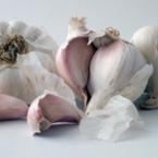 Редовното приемане на чесън предпазва от простуда и грип