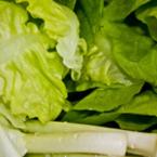 Зелени храни за силен имунитет или как да изчистим нитратите