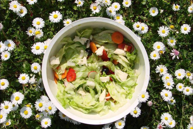 Мощната сила на зелените храни