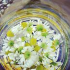 Полезни билки срещу пърхот
