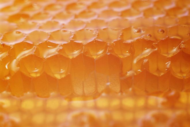 Нектарен пчелен мед