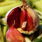 Вкусно и полезно през есента (част 2)