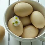 Яйцата и ползата им за щитовидната жлеза