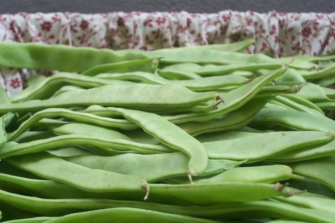 Полезни свойства на зеления фасул