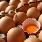Лечение с яйчени черупки