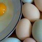 Яйца против стрес