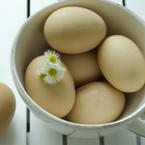 Излекувайте ечемик на окото само с яйце