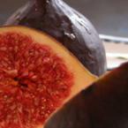Няколко факта за смокините, които може би не знаете