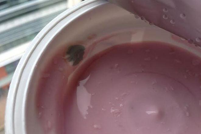 Ужас - продават здравословно кисело мляко с мухъл