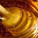 Медът - лекарство и храна, която се усвоява 100 процента от организма