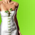 Кои са най-добрите зелени суперхрани