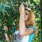 Традиционният Фестивал на сливата в Троян ще се проведе от 19 до 21 септември