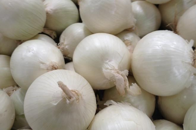 бял лук