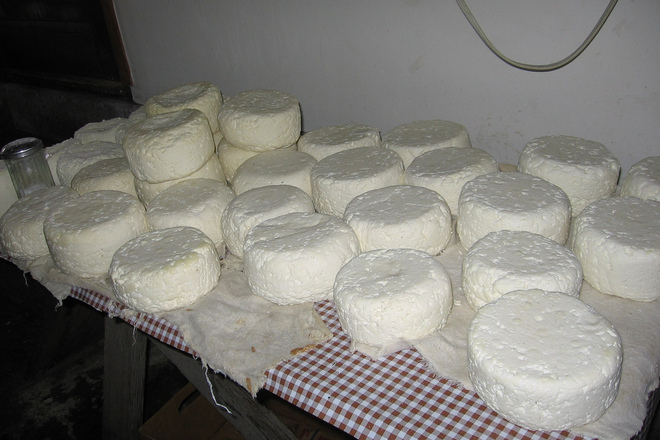 овче сирене