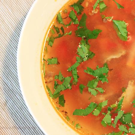 Large supa ot govezhdo meso
